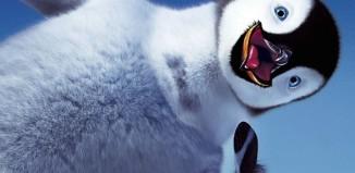 Filtre google pingouin