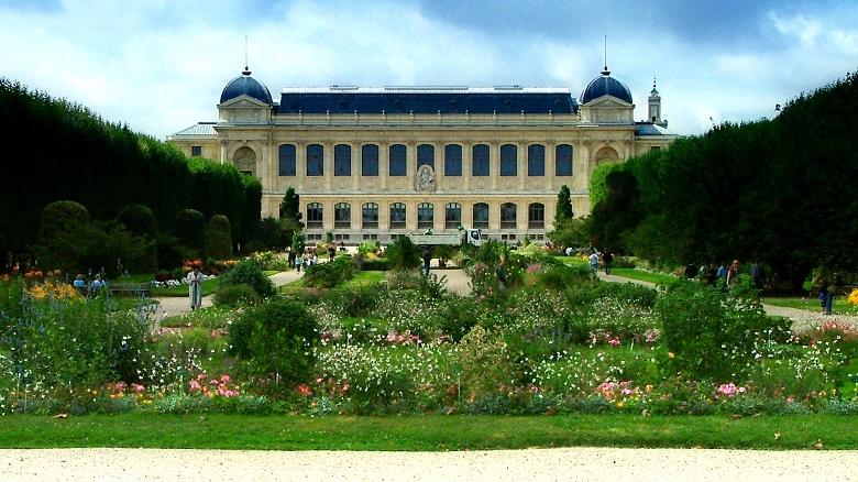 Visite guidée du musée d'histoire naturelle de Paris 4