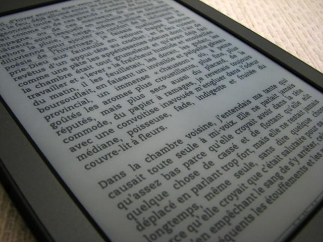 La liseuse électronique : accéder à votre bibliothèque en un clic !