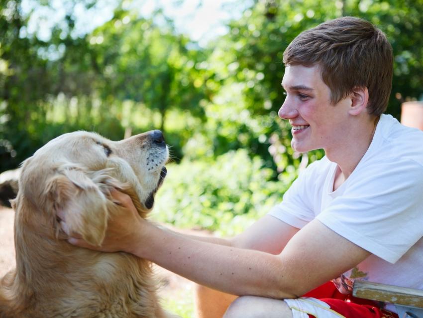 Prenom Chien En M - Astuces - Techniques de base - Guide du chien