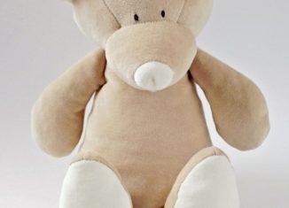 pourquoi teddy bear
