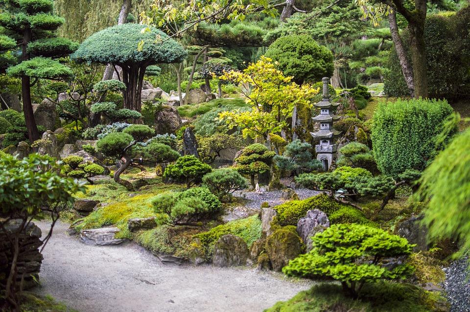 Elaborer Un Veritable Jardin Japonais