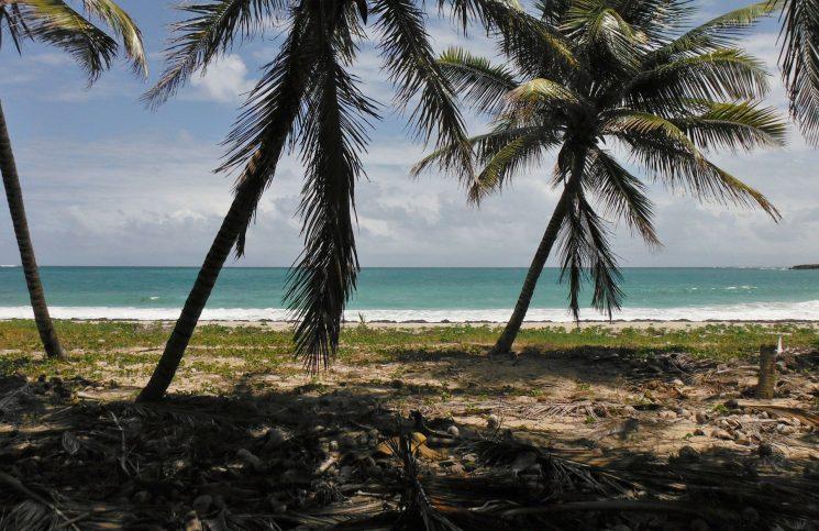 Location de voiture en Martiniqu