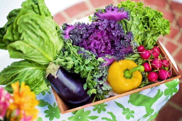 Distribution de légume